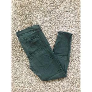LOFT women's pants